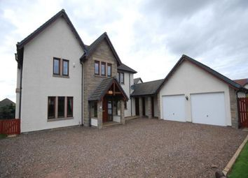 Thumbnail 4 bed detached house to rent in Craigie Hill, Drumoig, Leuchars, St. Andrews