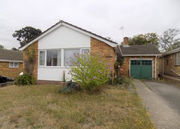 Thumbnail 3 bed detached bungalow to rent in Hillview Road, Hythe