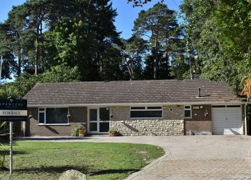 Thumbnail 4 bed detached bungalow for sale in St Ives Wood, St Ives, Ringwood