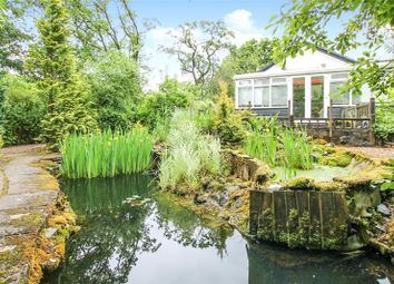Thumbnail 3 bed bungalow for sale in Halwill, Beaworthy
