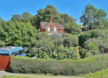 Thumbnail 3 bed detached house for sale in Steep Lane, Findon Village, West Sussex