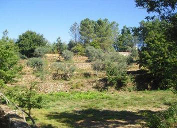 Thumbnail Land for sale in Pedrogao Grande, Leiria, Portugal