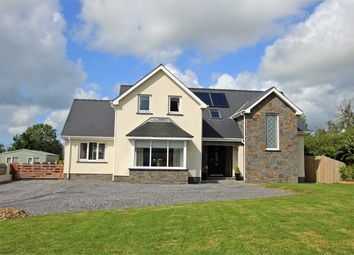 Thumbnail 4 bed detached house for sale in Saron, Llandysul, Carmarthenshire