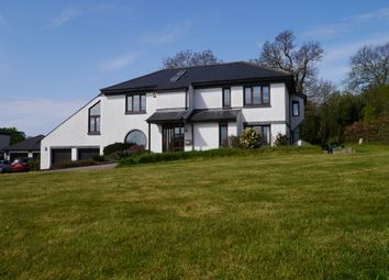 Thumbnail 5 bed detached house for sale in Cove Meadow, Wilcove, Torpoint