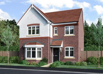"Thumbnail 4 bedroom detached house for sale in ""Calver"" at Aldbury Close, Stafford"