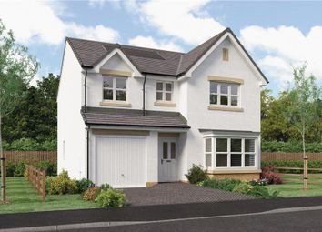 "Thumbnail 4 bedroom detached house for sale in ""Murray"" at Hawkhead Road, Paisley"