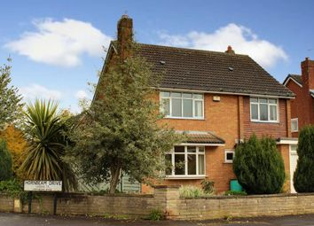 Thumbnail 4 bed detached house for sale in Hornbeam Drive, Cottingham