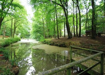 Thumbnail 5 bed detached house for sale in Walliswood, Dorking