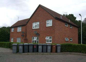 Thumbnail Studio to rent in Burton Place, Chelmsford