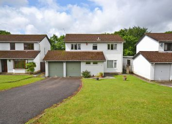 Thumbnail 4 bed detached house for sale in Spacious Family House, Wood Close, Newport