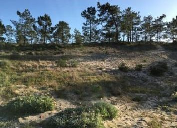 Thumbnail Land for sale in Grândola, Portugal