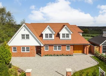 Thumbnail 4 bedroom detached house for sale in Much Birch, Hereford