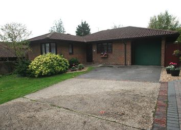 Thumbnail 2 bed detached bungalow for sale in Lychpit, Basingstoke, Hampshire