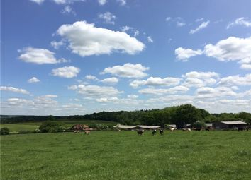 Thumbnail Farm for sale in Romsey Road, Lockerley, Romsey, Hampshire