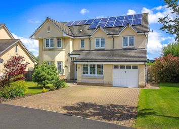 Thumbnail 5 bed detached house for sale in Paterson Gardens, Hawick