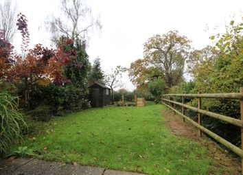 Thumbnail 3 bed semi-detached house to rent in Woodchurch Road, Shadoxhurst, Ashford