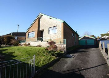 Thumbnail 4 bed detached bungalow for sale in Connor Park, Ballynahinch