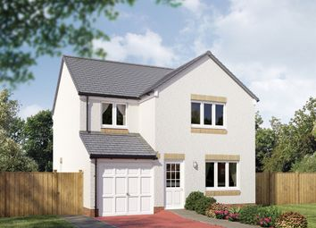 "Thumbnail 4 bed detached house for sale in ""The Leith"" at Hamilton Road, Larbert"