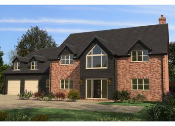 Thumbnail 5 bed detached house for sale in Long Drove, Waldersea, Friday Bridge, Wisbech