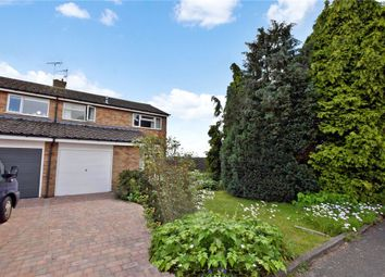 Thumbnail 3 bed semi-detached house for sale in Mathews Close, Halstead