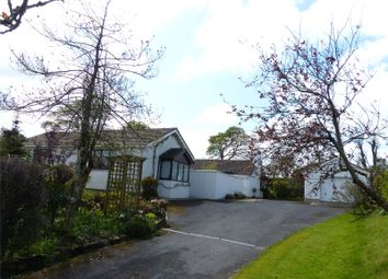 Thumbnail 4 bed detached bungalow for sale in Crynga, Cold Blow, Narberth, Pembrokeshire