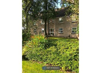 Thumbnail 2 bed flat to rent in Castle Court, Colne