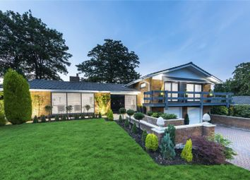 Thumbnail 4 bed detached bungalow for sale in Haymeads Drive, Esher, Surrey