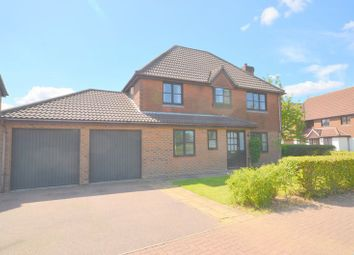 Thumbnail 4 bed detached house for sale in Broadland Drive, Thorpe End, Norwich