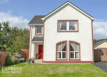 Thumbnail 4 bed property for sale in Bushfield Mill, Park, Londonderry