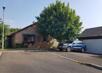 Thumbnail 3 bedroom detached bungalow to rent in Newbery Close, Colyton