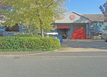 Thumbnail Light industrial to let in Unit 19 Apex Business Park, Diplocks Way, Hailsham