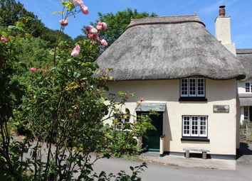 Thumbnail 3 bed cottage for sale in Hope Cove, Kingsbridge