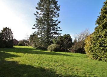 Thumbnail 3 bed detached bungalow for sale in Coney Weston, Bury St. Edmunds, Suffolk