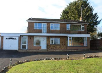 Thumbnail 4 bed property to rent in Hillside Road, Flore, Northampton
