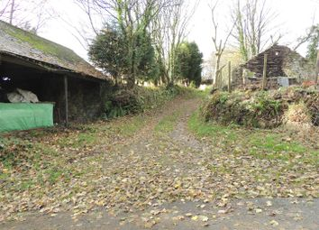 Thumbnail 2 bed cottage for sale in Coombe, Coombe