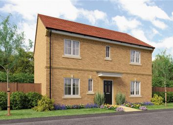 "Thumbnail 4 bedroom detached house for sale in ""The Stevenson B"" at Backworth, Newcastle Upon Tyne"