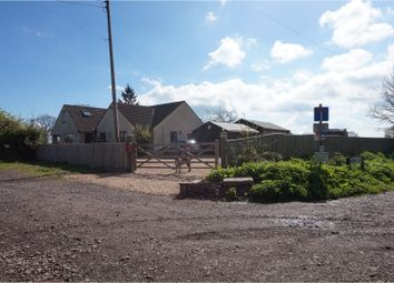 Thumbnail 5 bed property for sale in Worthy Lane, Taunton