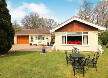 Thumbnail 3 bed bungalow for sale in Loxwood, Billingshurst, West Sussex