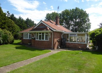 Thumbnail 3 bed detached bungalow for sale in Newlyn, 15 West End, Geldeston, Beccles, 0Lt