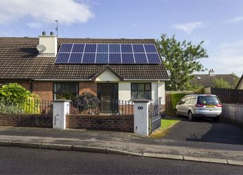 Thumbnail 3 bedroom semi-detached bungalow for sale in The Meadows, Londonderry
