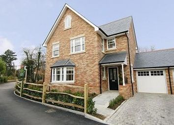 Thumbnail 4 bed detached house to rent in Sunningdale, Berkshire