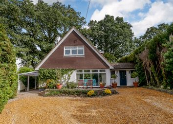 Thumbnail 4 bed detached house for sale in Orchard Hill, Windlesham, Surrey