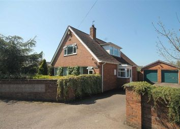Thumbnail 3 bed detached bungalow for sale in Walford, Ross-On-Wye
