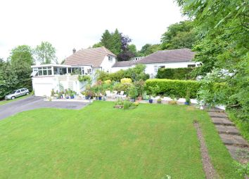 Thumbnail 6 bed equestrian property for sale in Ash, Sevenoaks, Kent