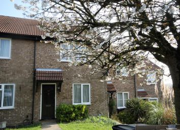 Thumbnail 2 bedroom terraced house to rent in Yew Tree Rise, Ipswich, Suffolk
