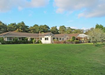 Thumbnail 5 bedroom bungalow for sale in Kennford, Exeter