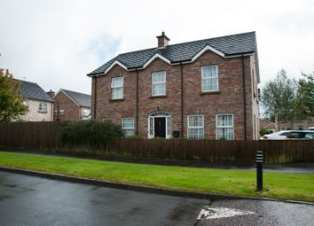 Thumbnail 4 bed detached house for sale in Millbrooke Manor, Ballymoney