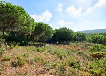 Thumbnail Land for sale in Av. Almenara, S/N, 11310 Sotogrande, Cádiz, Spain