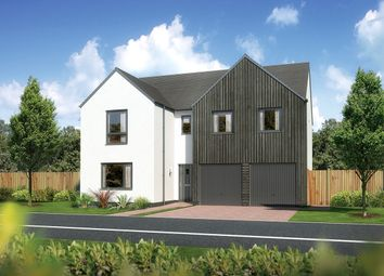 "Thumbnail 5 bed detached house for sale in ""Malborough"" at Carron Den Road, Stonehaven"