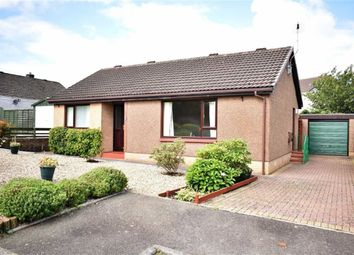 Thumbnail 2 bed detached bungalow for sale in 17, Oakfield Court, Dumfries